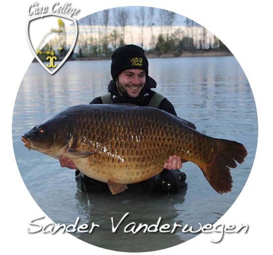 Sander-1-1